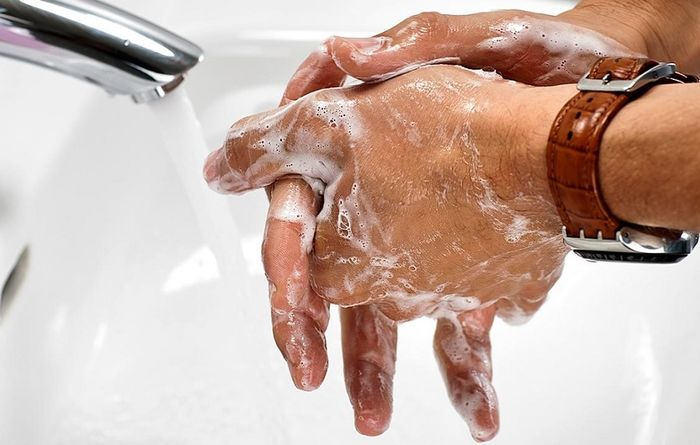 More soap less grease on palms at Toronto 'petri dish'
